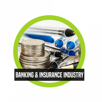 Banking and Insurance Industry